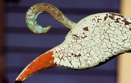 Painted Bird 1